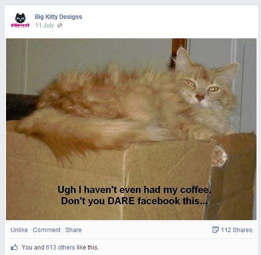 מתוך דף הפייסבוק Big Kitty Designs