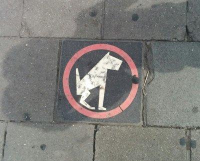 כלבים יקרים, נא לא לחרבן על המדרכה