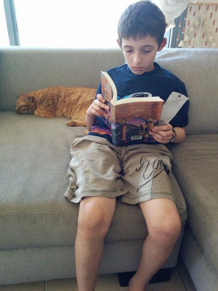 Reading Harry Potter and the Sorcerer's Stone  with Dexter